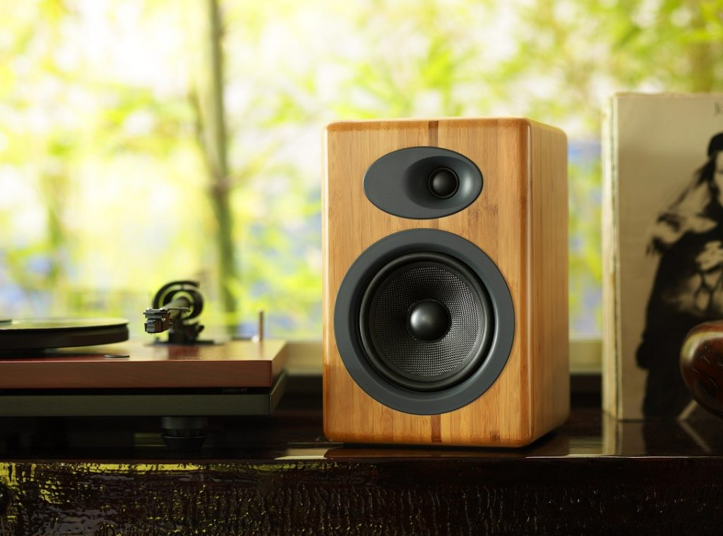 budget speakers for vinyl